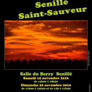 Artistes Senillé Saint-Sauveur