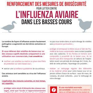 Renforcement des mesures de biosécurité Influenza aviaire